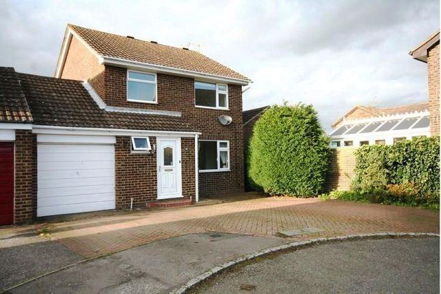 Thumbnail Semi-detached house to rent in Juniper Close, Ashford