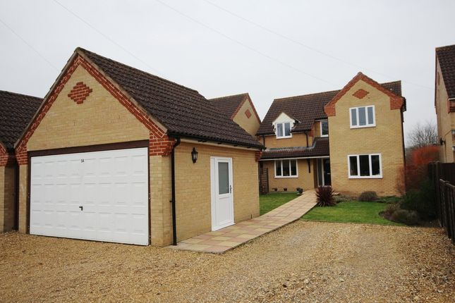 Thumbnail Detached house for sale in Broad Piece, Soham, Ely