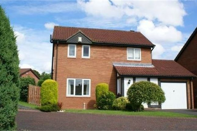 Thumbnail Detached house to rent in Dominies Close, Rowlands Gill, Tyne And Wear