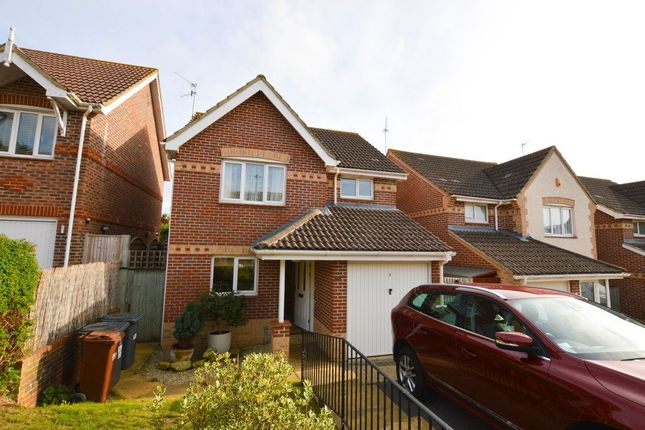Thumbnail Property to rent in Penrith Way, Eastbourne