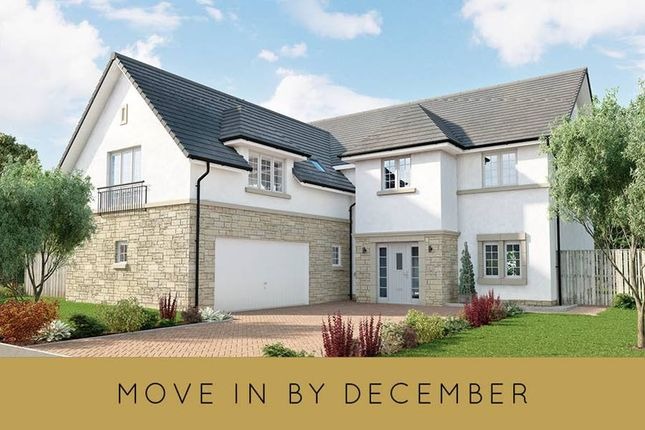 """Thumbnail 5 bedroom detached house for sale in """"The Ranald"""" at Milngavie Road, Bearsden, Glasgow"""
