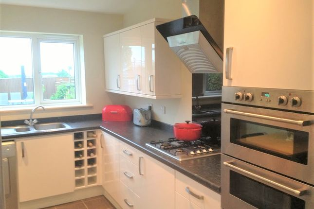 Thumbnail Detached house to rent in Willow Drive, Havercroft