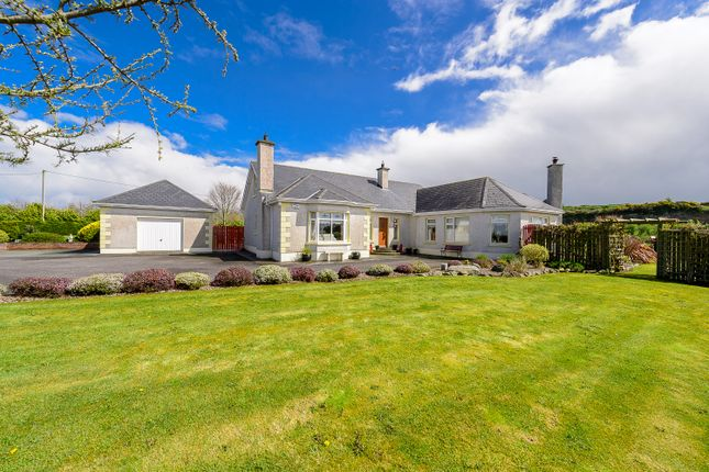 Thumbnail Detached house for sale in Ivy House, Gaynorstown Lane, Old Road, Monasterboice, Louth