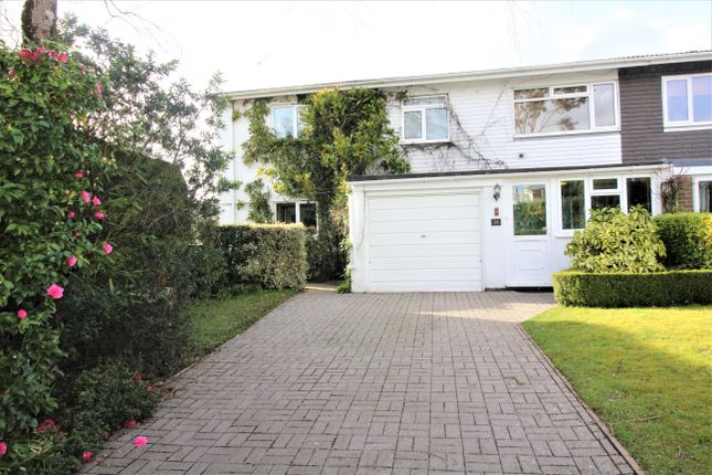 Thumbnail Semi-detached house for sale in Brookwood Close, South Brent
