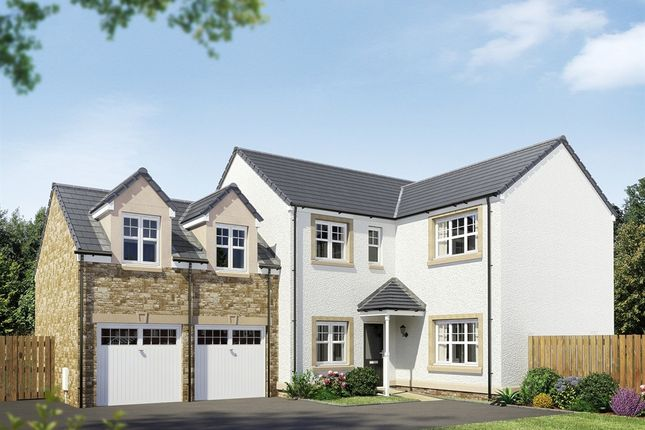 "Thumbnail Detached house for sale in ""The Holyrood"" at Hamilton Road, Larbert"