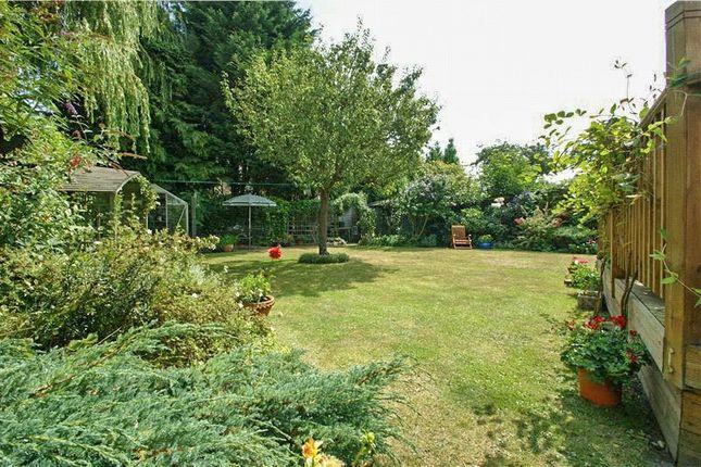 Thumbnail Detached house to rent in Rances Lane, Wokingham, Berkshire