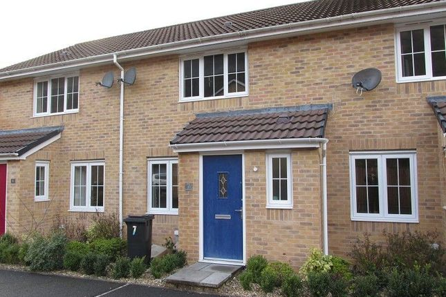 Thumbnail Terraced house to rent in Llys Cambrian, Godrergraig, Swansea.