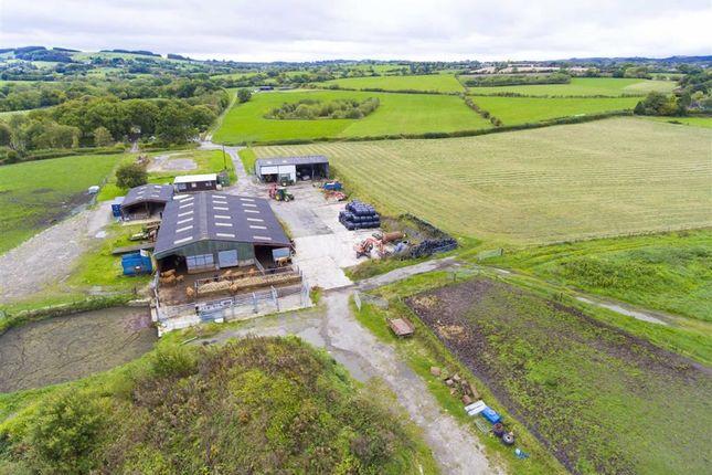 Farm for sale in Ffordd Llanfynydd, Treuddyn, Mold