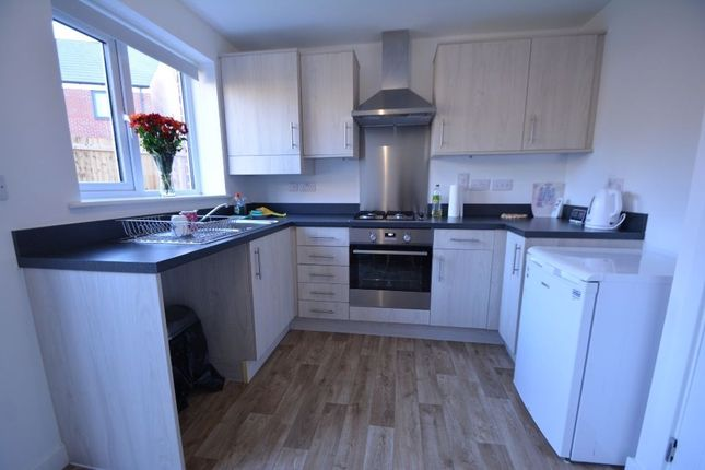 Thumbnail Property to rent in Clovelly Drive, Peterborough