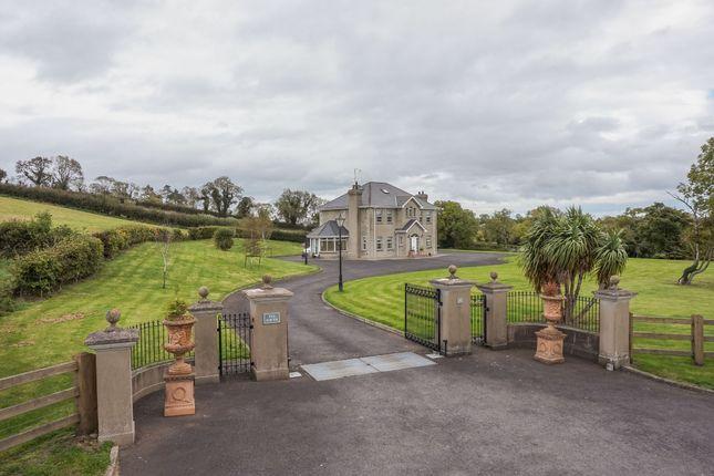 Thumbnail Detached house for sale in Castlerainey Road, Crossgar