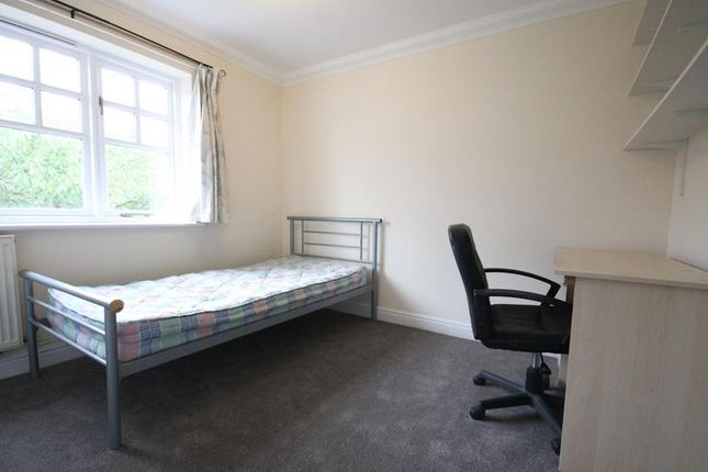Thumbnail Property to rent in Chestnut Hill, Norwich