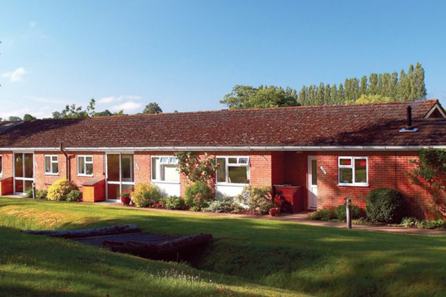 Thumbnail Terraced bungalow to rent in Finns Industrial Park, Mill Lane, Crondall, Farnham