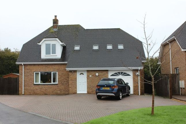 Thumbnail Detached house for sale in Gewans Meadow, St. Austell