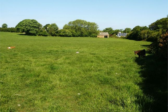 Land for sale in Glanrhyd, Cardigan