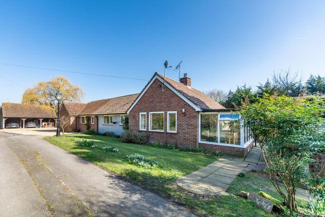 Thumbnail Detached bungalow for sale in Yapton Road, Barnham, Bognor Regis