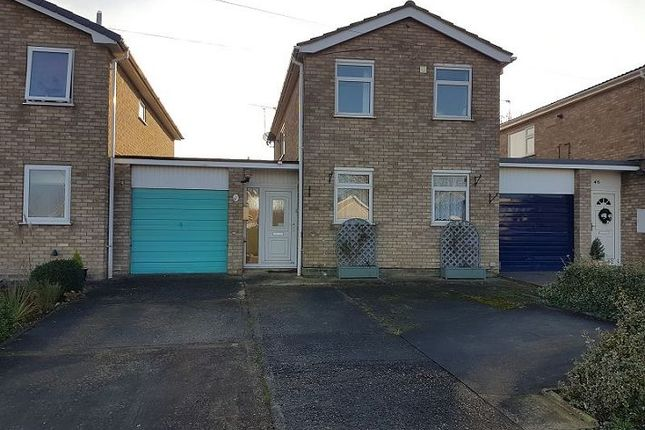 Thumbnail Detached house to rent in Lee Avenue, Washingborough