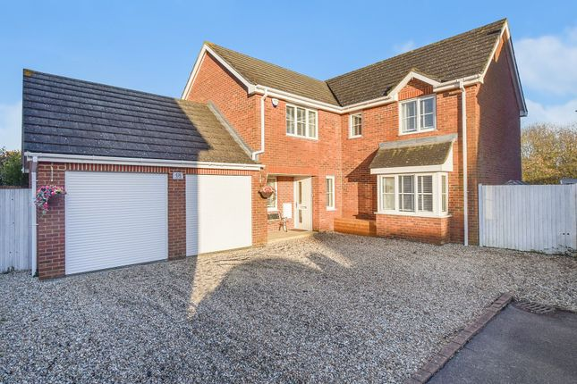 Thumbnail Detached house for sale in Acorn Close, Kingsnorth, Ashford