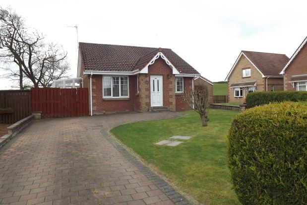 Thumbnail Detached bungalow to rent in Maddiston, Falkirk