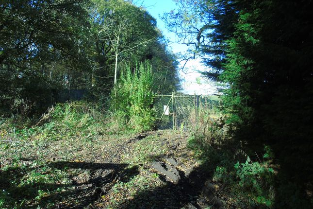Thumbnail Land for sale in Gubeon Wood, Tranwell Woods, Morpeth