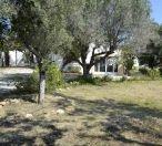 Jav3584 - Tarraula Villa 5