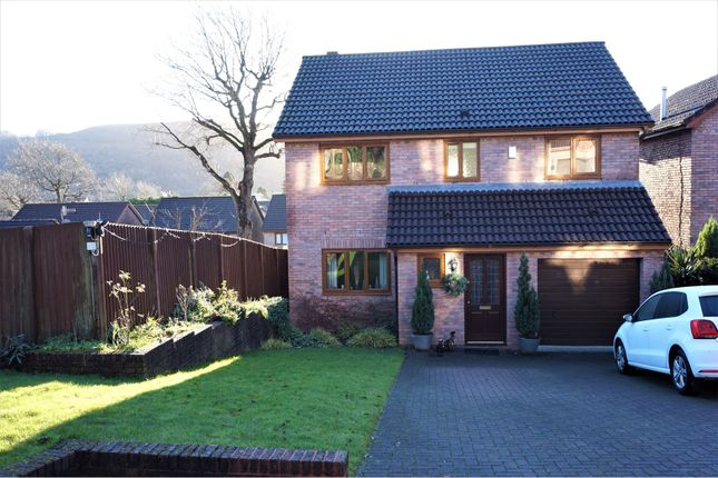 Thumbnail Detached house for sale in Oakwood Rise, Clydach
