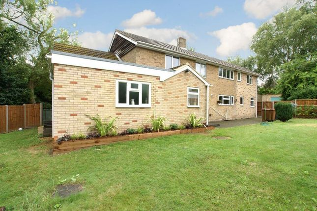 Thumbnail Detached house to rent in Digswell Park Road, Welwyn Garden City