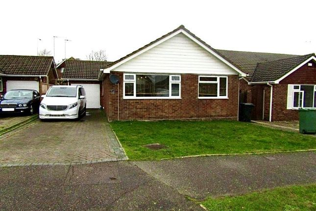 Thumbnail Bungalow to rent in College Road, Bexhill-On-Sea