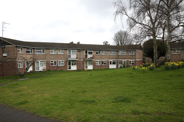 Thumbnail Shared accommodation to rent in Kingston House Gardens, Leatherhead