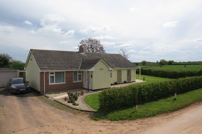 Thumbnail Detached house for sale in Hedging, North Newton, Bridgwater