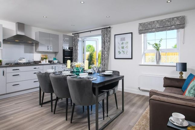 """Thumbnail Detached house for sale in """"Ingleby"""" at Tweed Street, Leicester"""