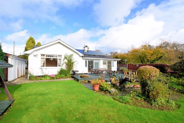Thumbnail Detached bungalow for sale in Clearbrook, Yelverton