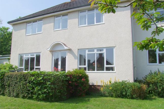 Thumbnail Detached house for sale in Upper Stoneborough Lane, Budleigh Salterton