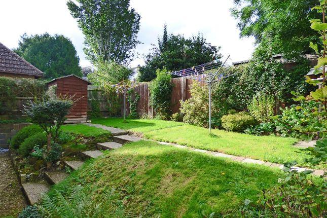 Garden of Park Road, Tisbury, Wiltshire SP3