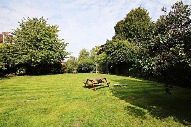 Garden At Back of Chartfield Avenue, London SW15