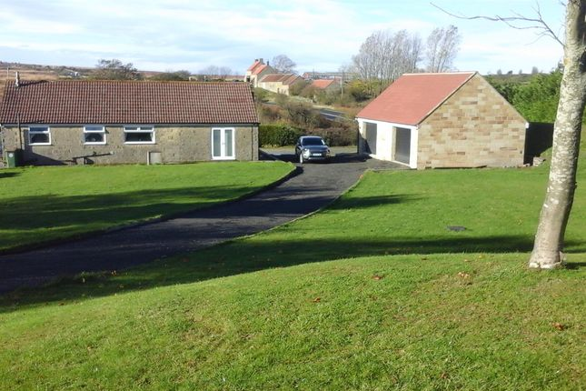 Thumbnail Detached bungalow for sale in Clay Hall Farm, Easington, Saltburn-By-The-Sea