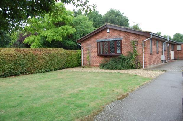 Thumbnail Bungalow to rent in Peashill Lane, Bedford