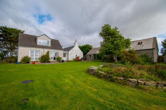 Thumbnail Cottage for sale in The Croft, Mains Of Forse, Latheron