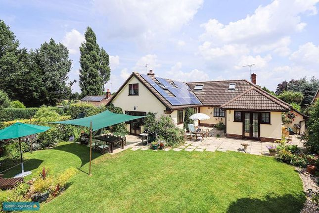Thumbnail Detached bungalow for sale in Lipe Lane, Henlade, Taunton