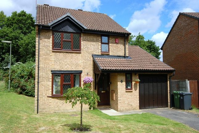 Thumbnail Detached house for sale in Waggoners Hollow, Bagshot