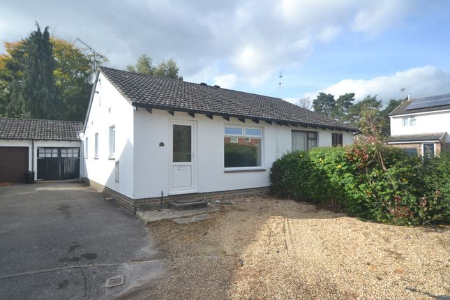 Thumbnail Semi-detached bungalow to rent in Kingfisher Way, Ringwood