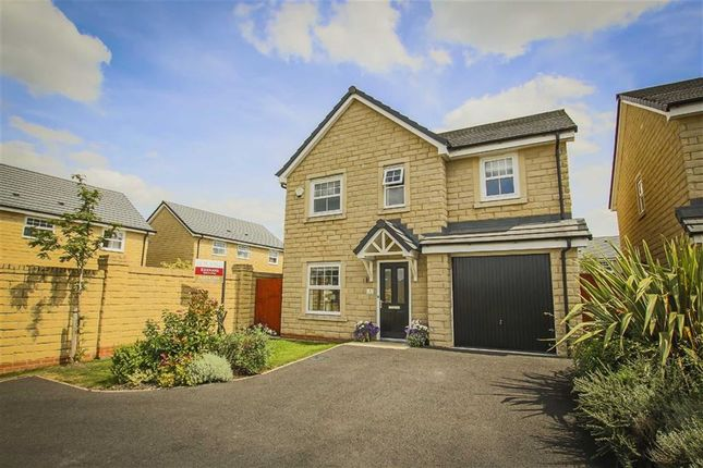 Thumbnail Detached house for sale in Mallard Row, Clitheroe, Lancashire