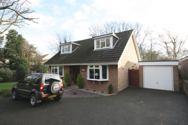 Thumbnail Detached bungalow for sale in Wayside Cloe, Milford On Sea