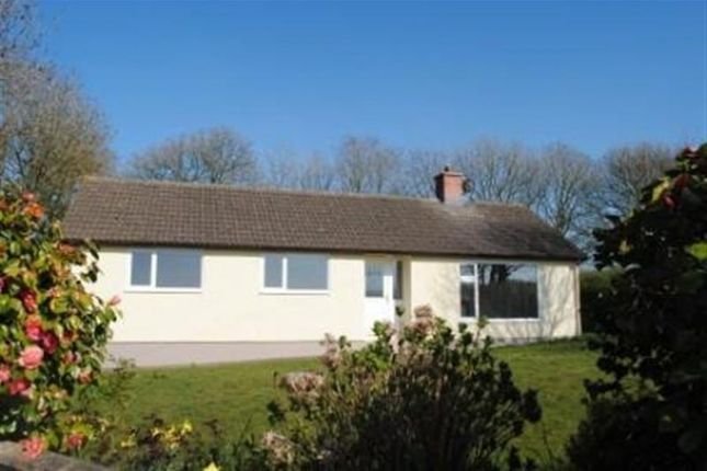 Thumbnail Bungalow to rent in Clarbeston Road