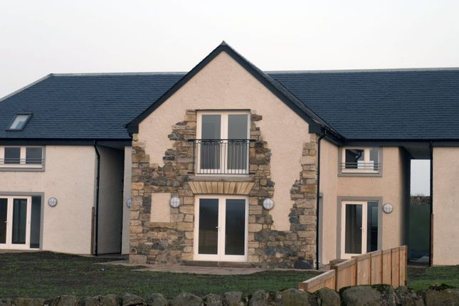 Thumbnail Link-detached house for sale in Main Street, Kilconquhar, Leven