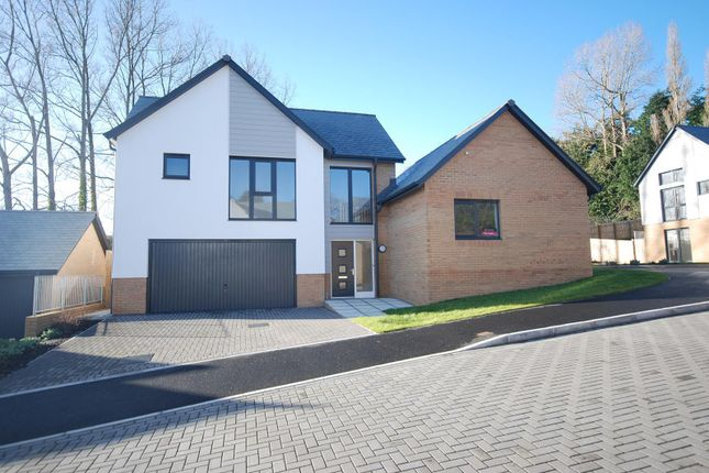 Thumbnail Detached house for sale in Meadow Rise, Northam, Nr Bideford