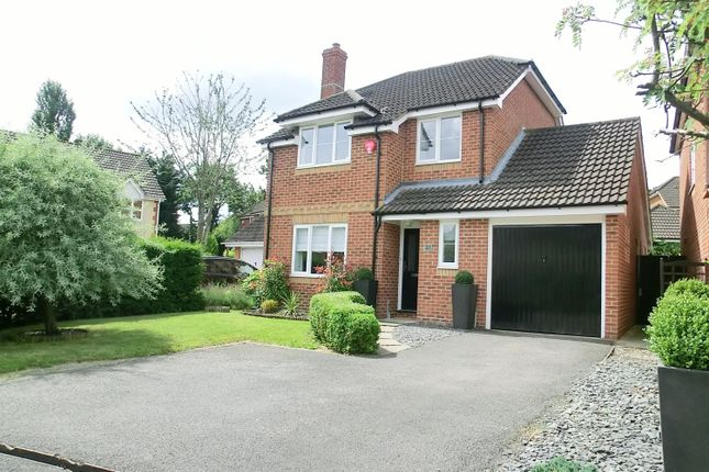 Thumbnail Detached house to rent in Munday Court, Binfield, Bracknell
