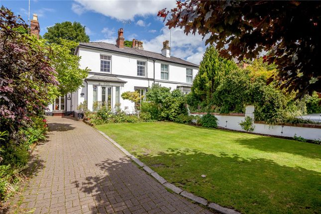 Thumbnail Semi-detached house for sale in The Groves, Chester