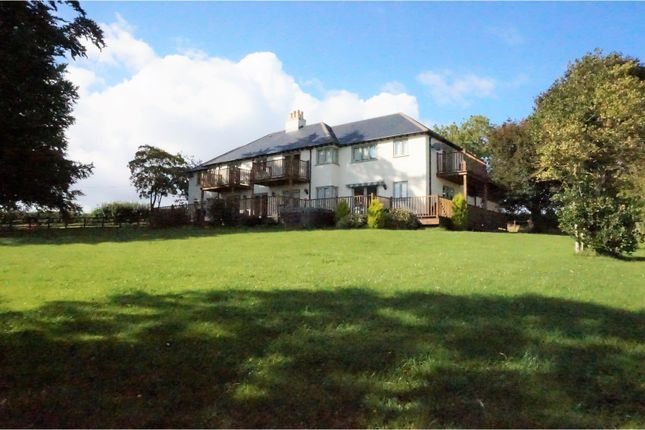 Thumbnail Detached house for sale in Birch Close, Blandford Forum