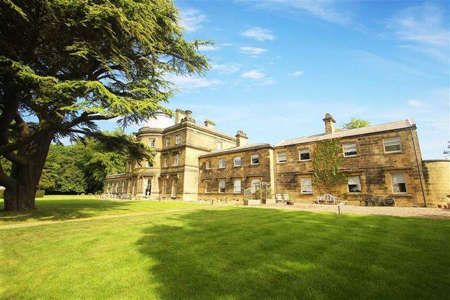 Thumbnail Flat to rent in Hartford Hall Estate, Bedlington