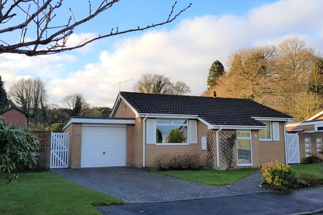 Thumbnail Detached bungalow for sale in Perrys Gardens, West Hill, Ottery St. Mary